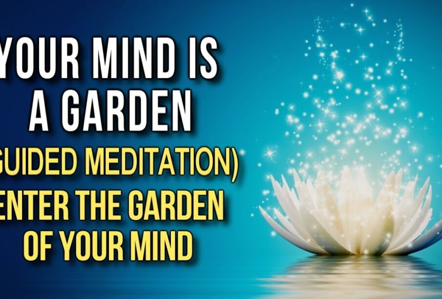 The Garden of Your Mind - Law of Attraction GUIDED MEDITATION (Plant the Seeds for WHAT YOU WANT!)